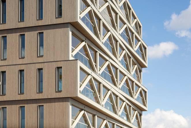 Le plus haut édifice en bois néerlandais