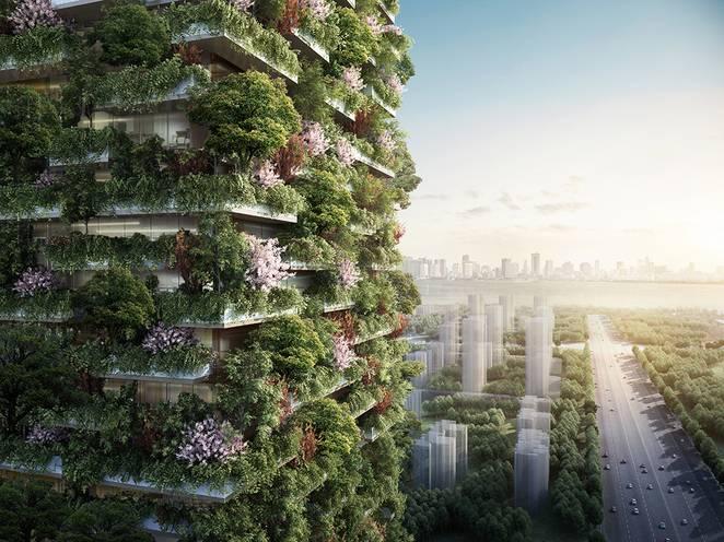 Comment décarboniser les villes et capter les gaz carbonique tout en aidant à la rafraichir.