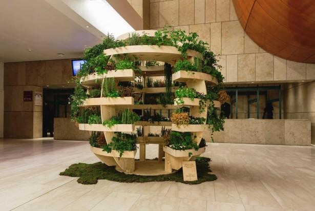 Un jardin d'intérieur sphérique à faire soi-même
