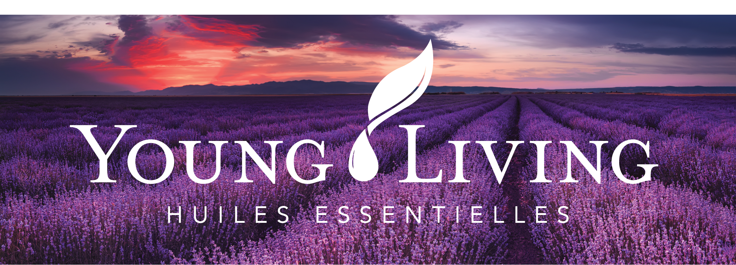Young Living – Huiles Essentielles