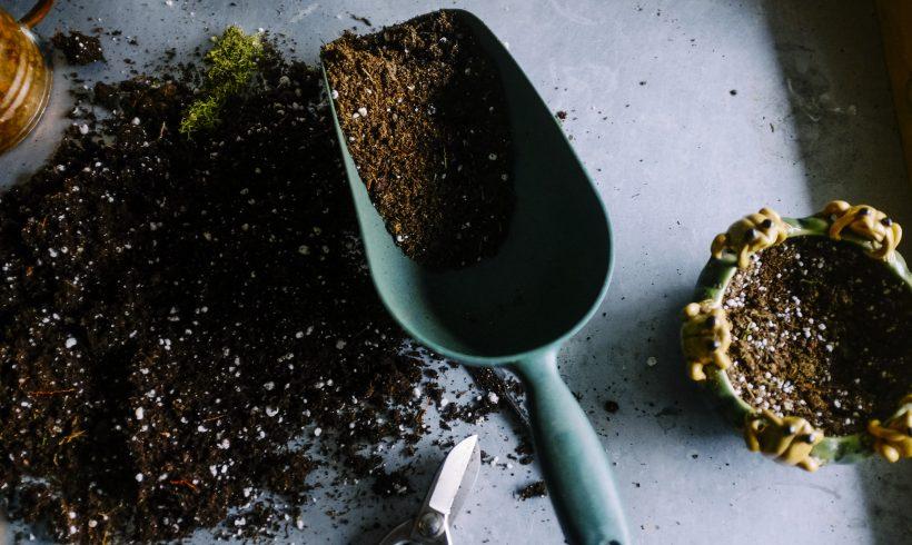 Le compostage domestique – une pratique simple et écologique