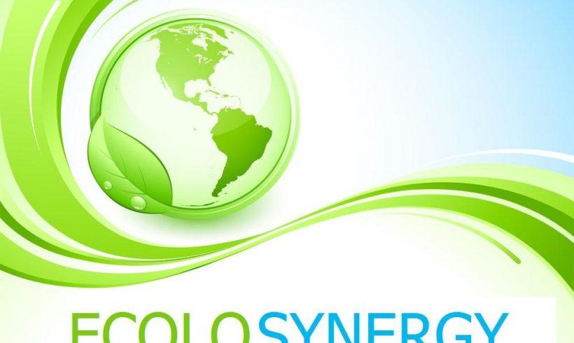Ecolosynergy