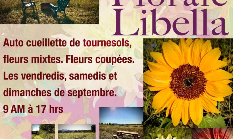 Ferme Florale Libella